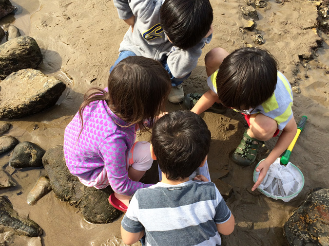 Abalone Cove tidepools kids