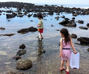 Abalone Cove Thumb Jpg
