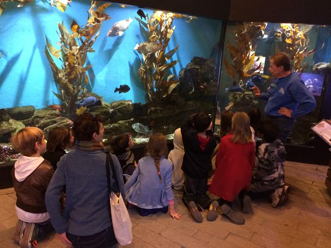 Cabrillo Aquarium docent lecture
