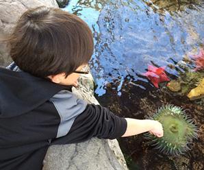 San Pedro Aquarium Hours