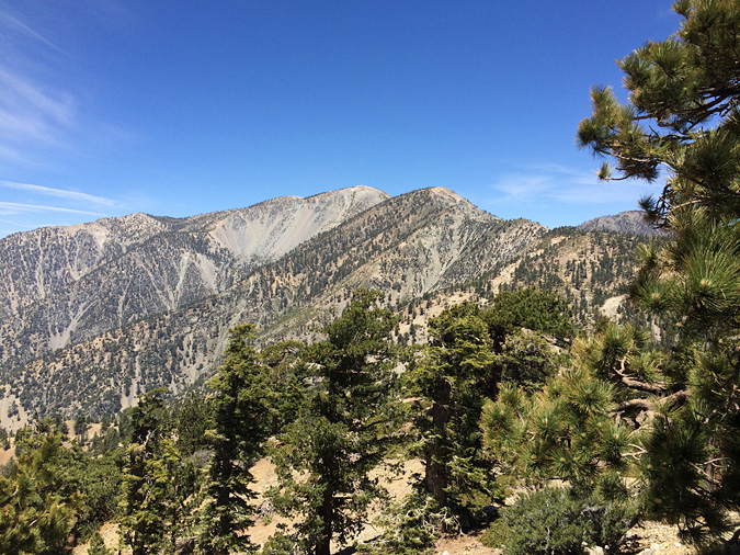 Looking toward the Mt Baldy summit from the Thunder Mountain trail