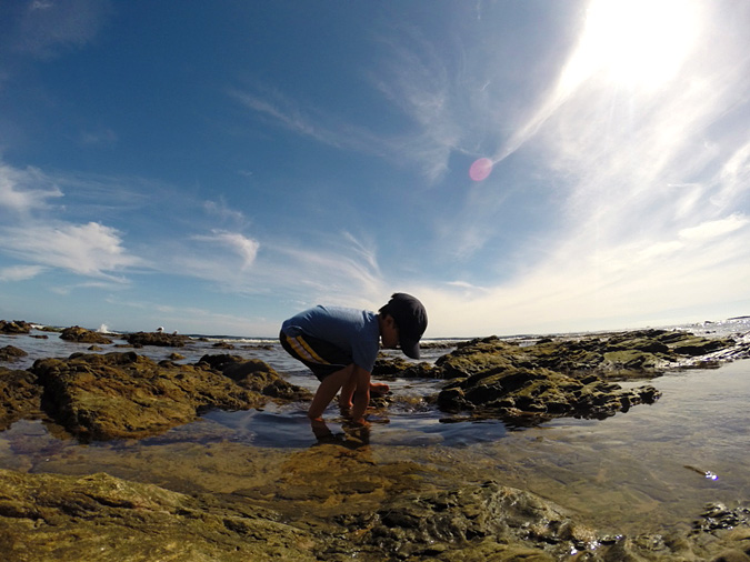 My son exploring the Crystal Cove tide pools