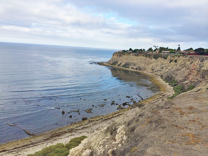 Palos Verdes Cove, looking north toward Palos Verdes Point from the top of the cliff