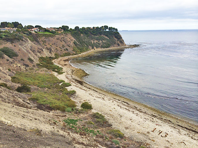 Palos Verdes Cove, looking south from the top of the cliffs