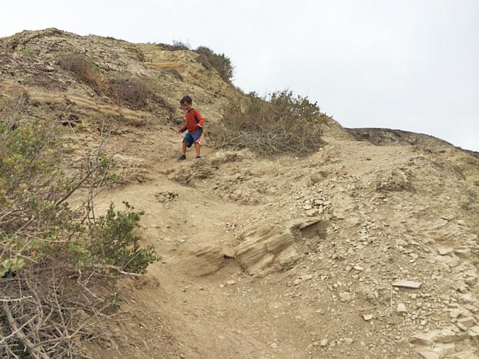 The trail down the Palos Verdes Cove cliff is a bit treacherous. Go slow and wear good shoes. No flip flops!
