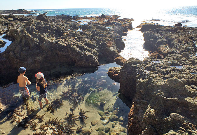 A beautiful protected tide pool just north of the Victoria Beach lighthouse
